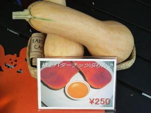 P1001340